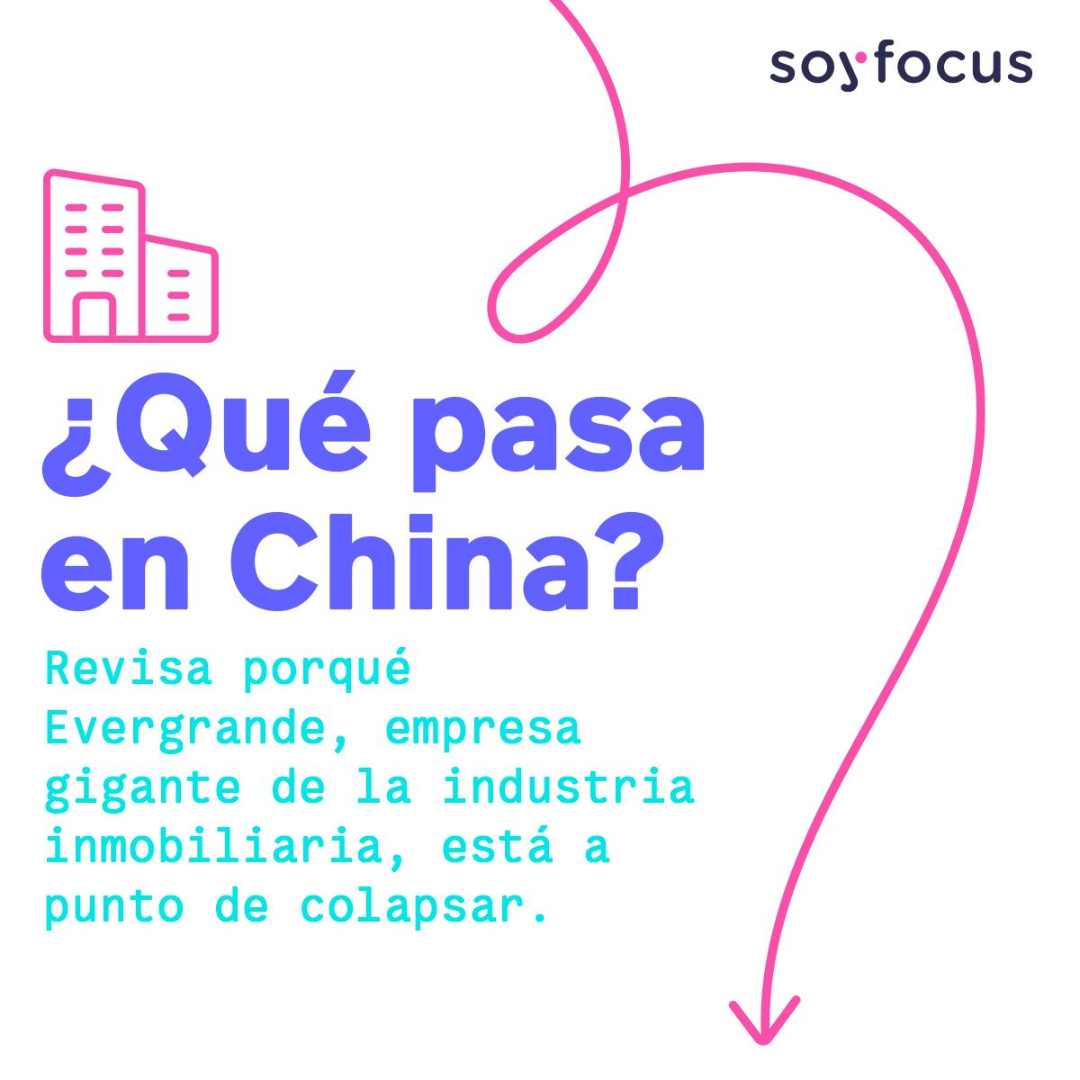 soyfocus.com